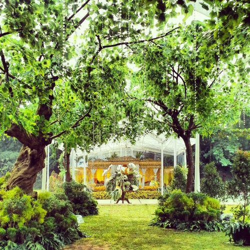 bantu manten wedding planner and organizer event organizer pernikahan
