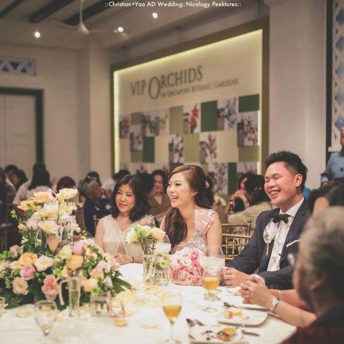 nicology peektures fotografi pernikahan