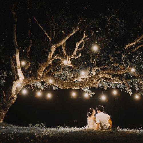 springworks fotografi pernikahan